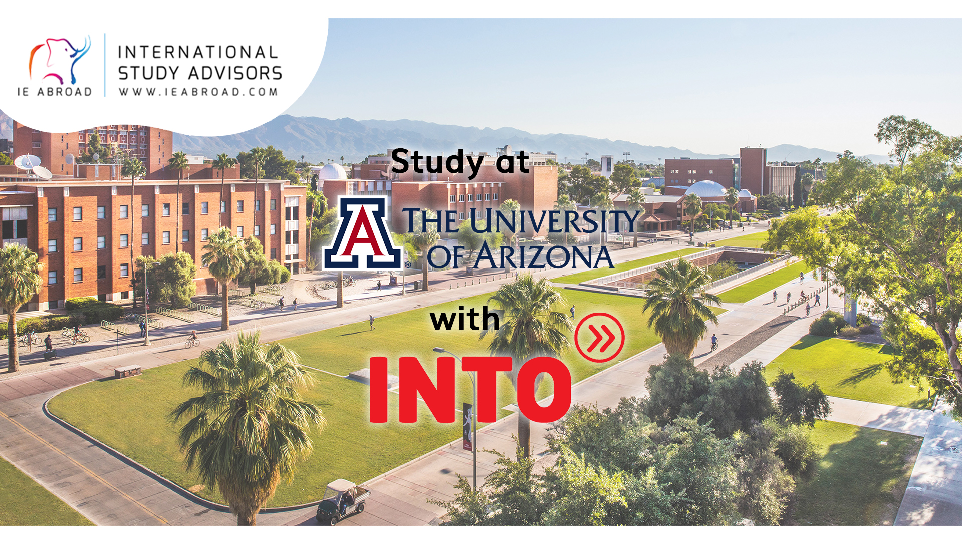 Fast and Curious-Arizona Uni_Thumbnail