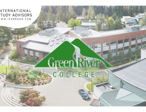 Fast & Curious: Green River College