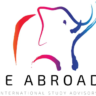 IE Abroad Team